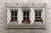 Ornate Window Security Bars — Stock Photo