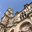 Cathedral of Málaga Spain — Stock Photo