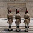 Changing of the Guard Evzones-05 — Stock Photo