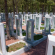 Memorial park for Turkish martyrs who lost their lives in 1915, in Canakkale, Turkey — Stock Photo