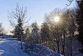 Winter mountain scenery landscape italy snow — Stock Photo