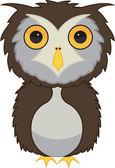 Owl bird — Stock Vector