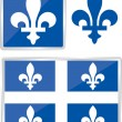 Quebec emblem — Vector de stock #20783139