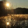 Stock Photo: Sunrise on lake at spring
