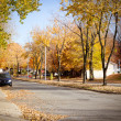 Stock Photo: Street at fall
