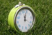 Horloge sur le concept de temps herbe — Photo