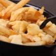 Poutine — Stock Photo #23300940