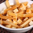 Poutine — Stock Photo #23302366
