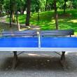 Stock Photo: Ping Pong Table