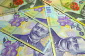 Romanian Lei Banknotes — Stock Photo