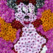 Minnie Mouse — Stock Photo #22932918