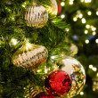 Christmas Tree — Stock Photo #22934154