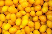 Kumquat Fruits — Stock Photo