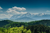 Carpathian Mountains Scenery — Стоковое фото