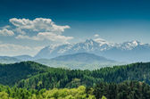 Carpathian Mountains Scenery — Stock Photo