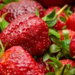 Strawberries Macro — Stock Photo