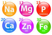 Essential Minerals — Stock Vector