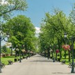 Stock Photo: Public Park Alley
