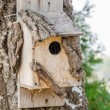 Wooden Bird House On A Tree — Stock Photo #30083029