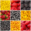 Colorful Fruit Background Collage — Stock Photo