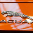 Foto de Stock  : Jaguar Sign