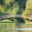 Arched Bridge Over Lake — Stock Photo