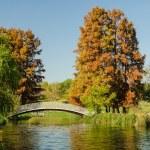 Vintage Bridge Over Lake — Stock Photo #34194381
