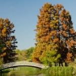 Vintage Bridge Over Lake — Stock Photo