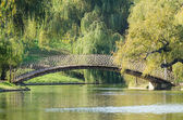 Arched Bridge Over Lake — Foto de Stock