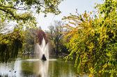 Lake Water Fountain — Stock Photo