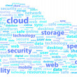 Stock Vector: In Cloud Online Data Storage Security Word Concept