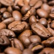 Fresh Roasted Coffee Beans — Stock Photo