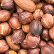 Roasted Hazelnuts — Stock Photo #36546919
