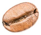 Coffee Bean Closeup — Stock Photo