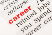 Career Word — Stock Photo