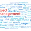 Stock Vector: Project Management Word Cloud