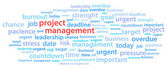 Project Management Word Cloud — Stock Vector
