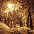 Royalty-Free Stock Photo: Winter night
