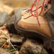 Hiking boot - Stock Photo