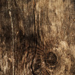 Wood background - Stok fotoraf