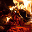 Burning woods in fire - Stock Photo