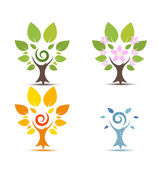 Trees on Four seasons - spring, summer, autumn, winter icon — Stock Vector
