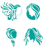 Hair fashion icon symbol of female beauty — Stock Vector