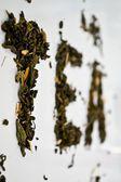 """Das Wort """"Tee"""" gestapelt mit grüner Tee-Blatt auf eine weiße Untertasse auf weißem Hintergrund — Stockfoto"""