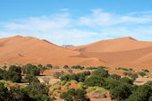 Sossusvlei Namibia — Stock Photo