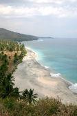 热带沙滩与棕榈树在阳光灿烂的日子。龙目岛 — 图库照片