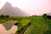 Yangshuo landscape - rice field — Stock Photo
