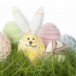 Collection of country Easter Eggs — Stock Photo