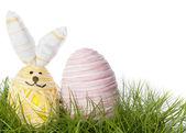 Happy Easter Bunny Egg — Stock Photo