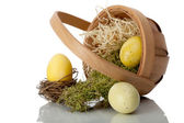 Basket of eggs on its side with moss and straw — Stock Photo